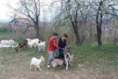 Васкршња добротворна акција 2018. љ.Г.